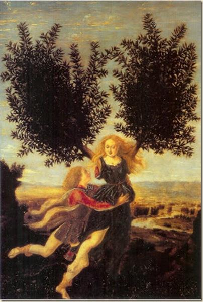 Apollon et Daphnée,  Antonio del Pollaiuolo