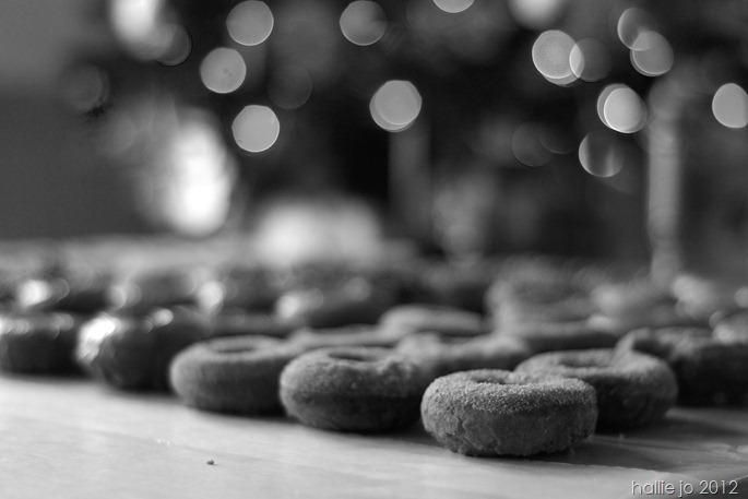 Donut16