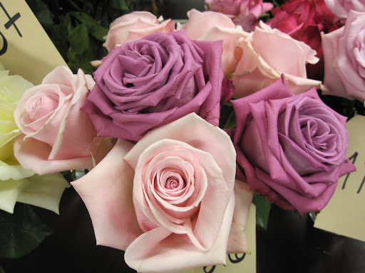 Again, roses that are not available yet. The price of the roses that are available range from 65 cents to $3 a stem.