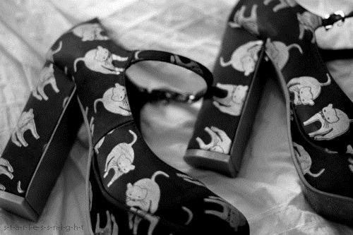 [beautiful-black-and-white-cat-cats-cute-Favim.com-286868%255B5%255D.jpg]