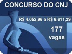 CNJ-9---4006