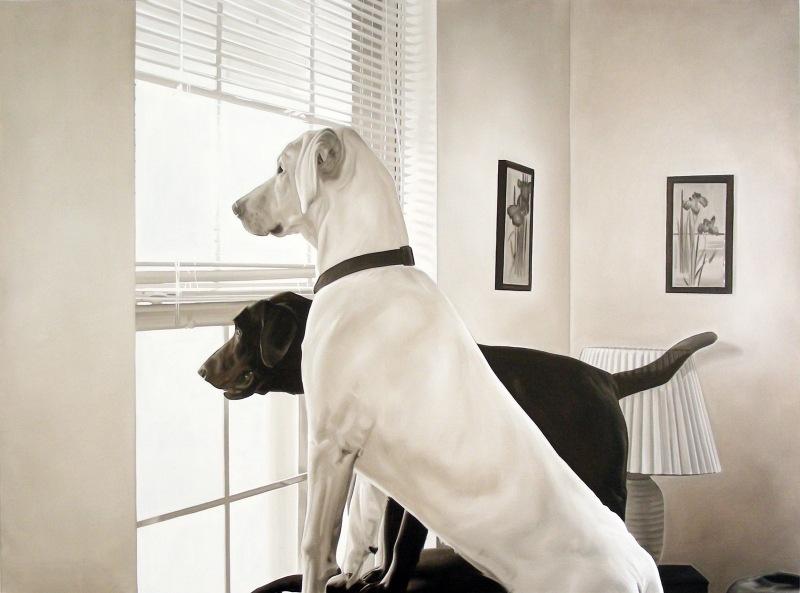 Matteomezzetta(Dogs)