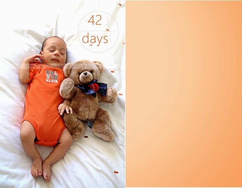Mr T 42 days