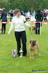 20100513-Bullmastiff-Clubmatch_30876.jpg