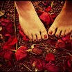 Pretty Feet with Leaves.jpg