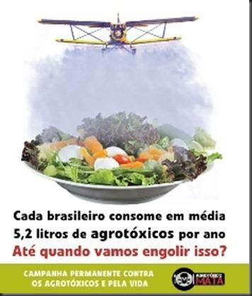 Campanha Permanente contra os agrotóxicos e pela vida3