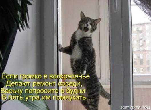 5b2363c5dd934486ff4b8e2b0ba_prev