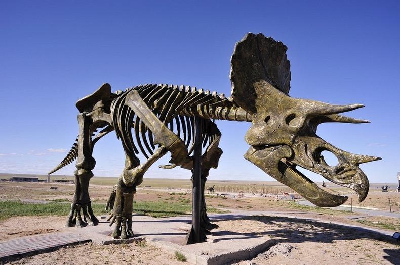 erenhot-dinosaurs-10