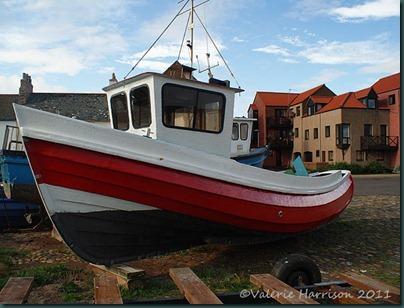 20-boat
