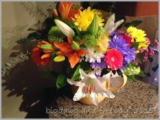 ct flowers