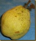 pear07