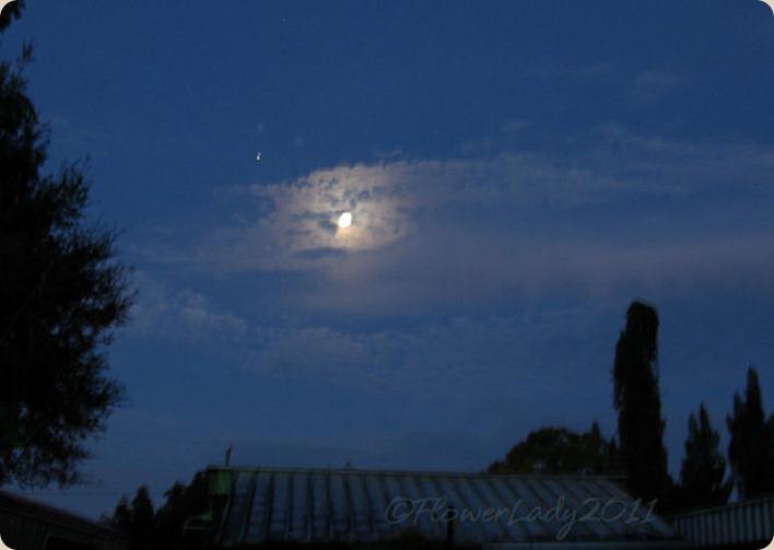 10-13-morning-sky