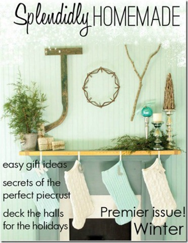 Diy Bar Cart Designs And Makeovers 60 additionally Decoracion De Banos Y Cocinas likewise Nancy Den 0808 moreover Glass Garden Art Garden Art Best Glue For Glass Garden Art moreover Remodeling Mobile Homes Before And After. on diy kitchen makeovers on a budget