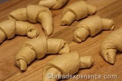 pumpkin-knot-yeast-rolls_1608_thumb[4]