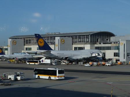 Aeroport Frankfurt: Lufthansa in greva