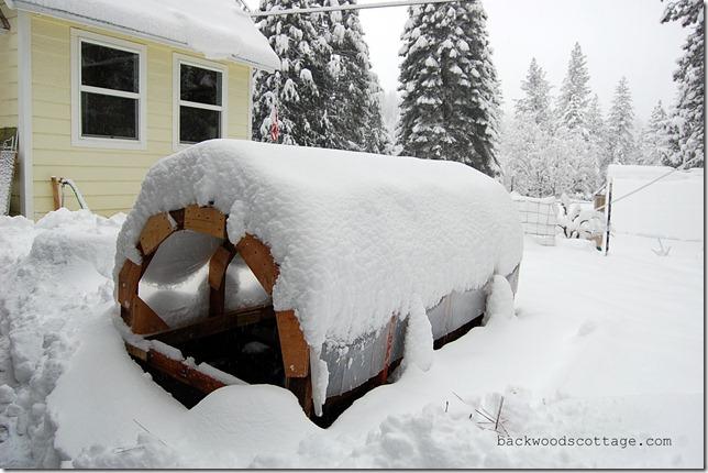 snowySunday6