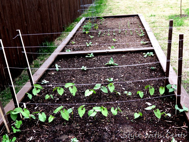 square foot gardening how to garden in a raised garden bed9