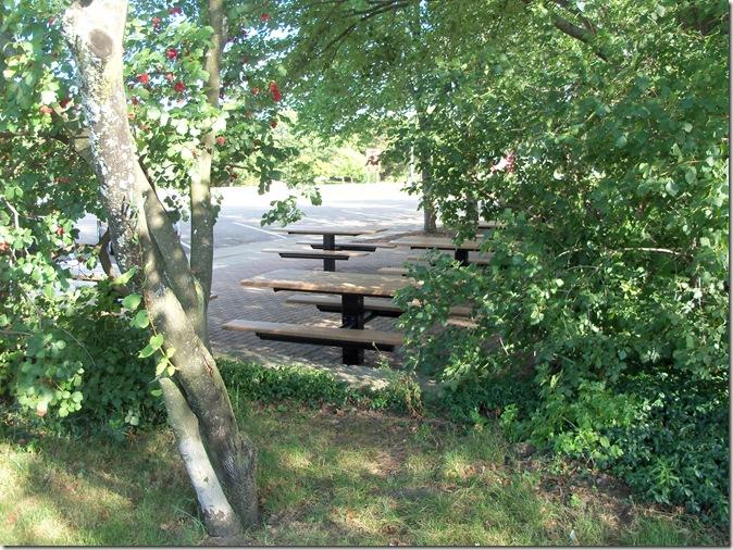 Harrisville State Park2011 100