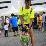 Pet Express Doggie Run 2012 Philippines. Jpg (267).JPG