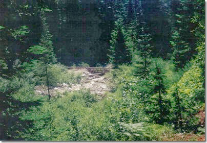 View from near Water Tower Footings at Wellington on the Iron Goat Trail in 2000