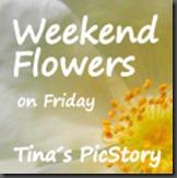 tinas flowers