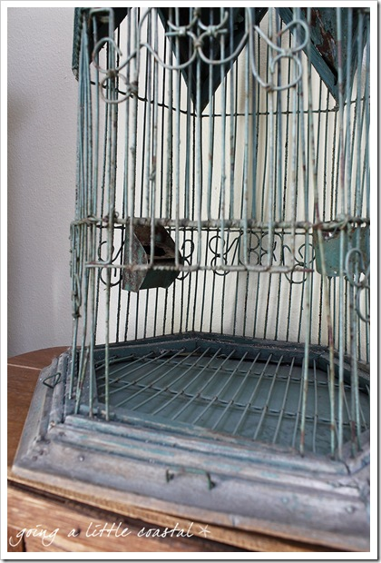 bird cage_edited-1