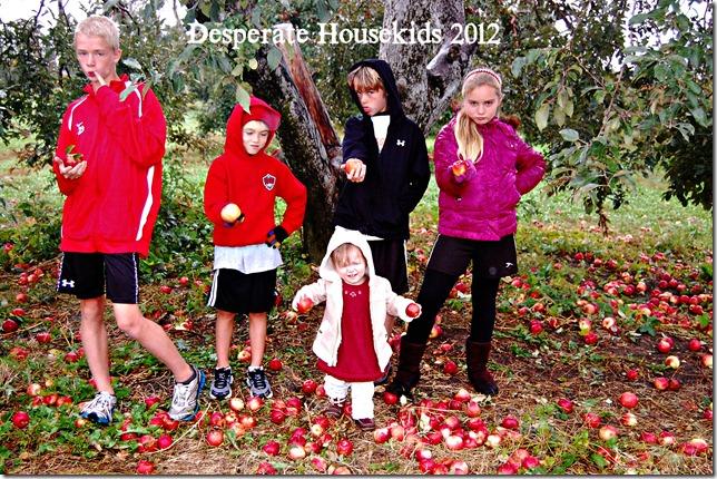 despaerate housekids