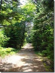 Lower Hadley Trail 2