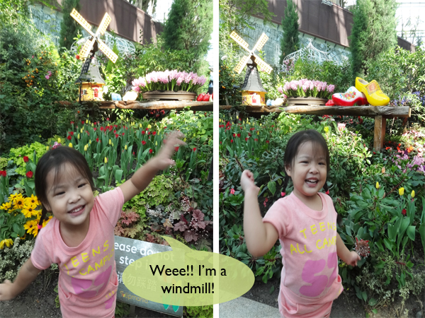 EV as windmill