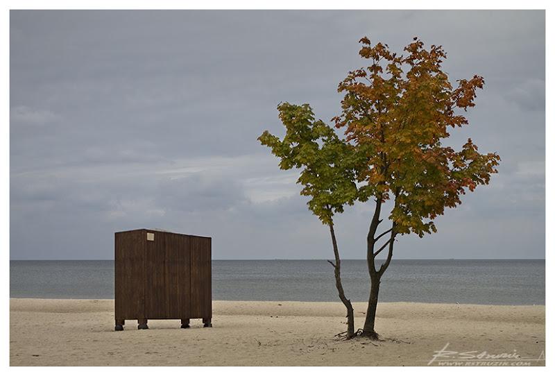 Sopot, plaża. Szafa... po prostu szafa. Szafa podobna do tysięcy innych szaf stojących na plażach całego świata.