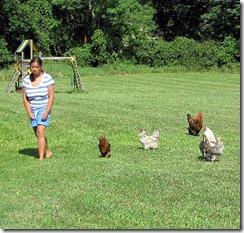 ChickenHerdingJade