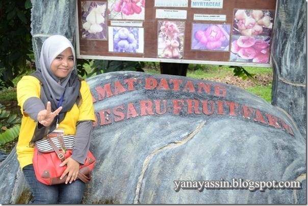 Desaru Fruits Farm012