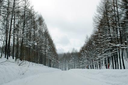2012-02-28 Snow 010