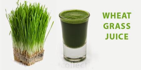 wheatgrassjuice