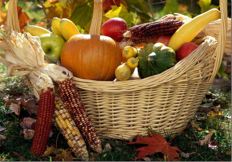 Harvest Time Autumn Harvest Basket