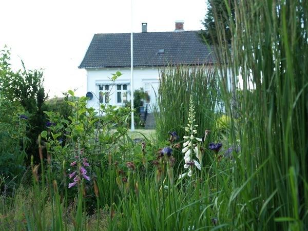 2012-06-27 Hagen på Møll (89)