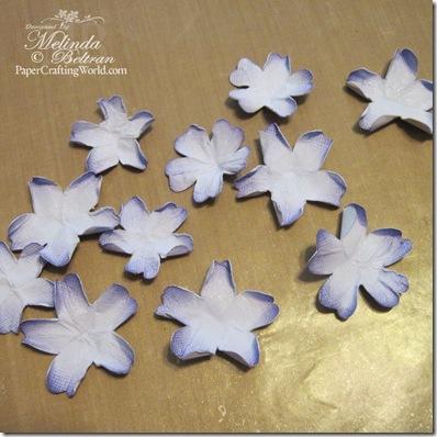 unfolded flowers-500