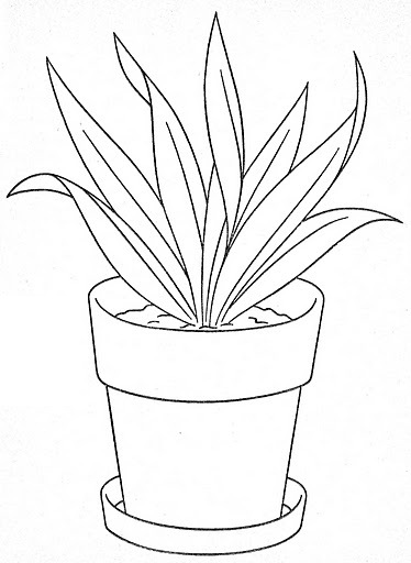 Flower Pot Coloring Page Free Pages Of Out Line