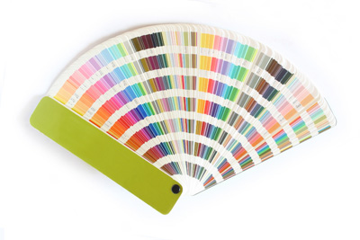 Color%20Swatch.jpeg