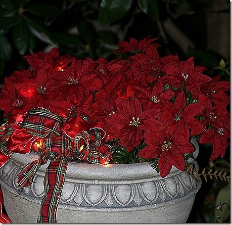 CHristmas_Planter2_2012