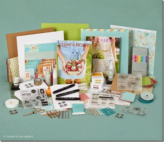 2015-04-se-cardmakers-new-consultant-kit
