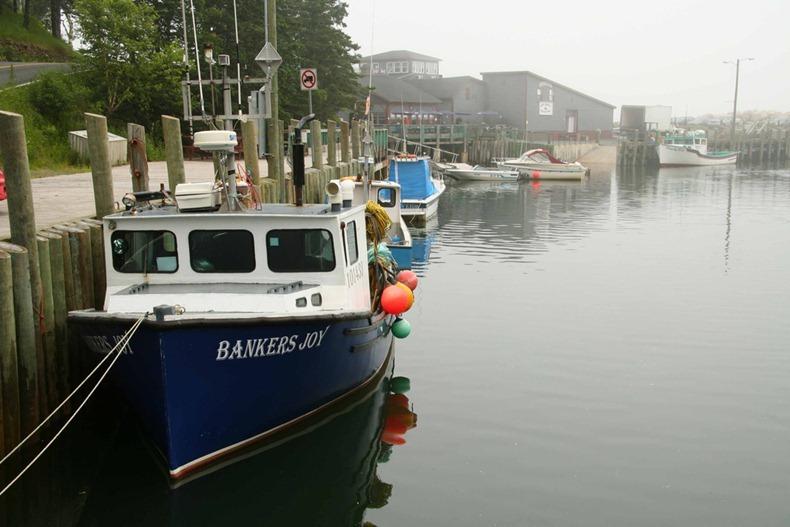 bay-of-fundy-2