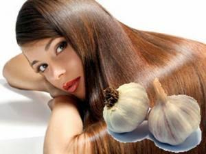 Lhuile de lavocat de la propriété et lapplication les cheveux