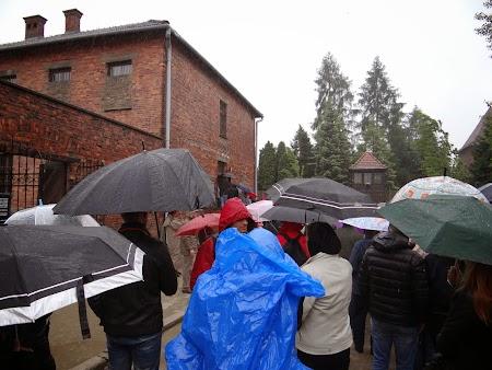 19. Pe ploaie la Auschwitz.JPG
