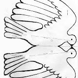 paloma doble.jpg