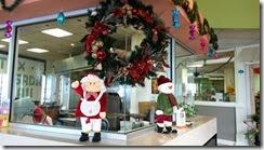 ハワイ島もクリスマス