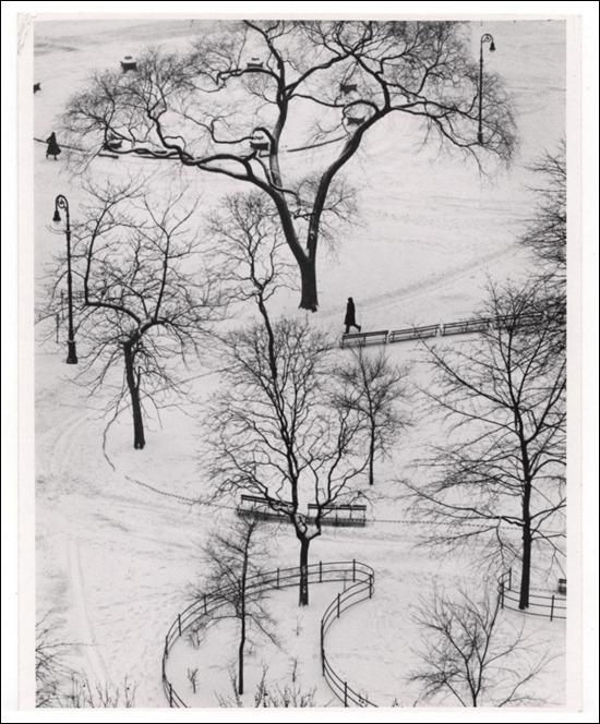 Fotografia de André Kertész, Inverno de 1954