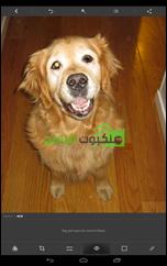تطبيق فوتوشوب للأندرويد Adobe Photoshop Express - 2