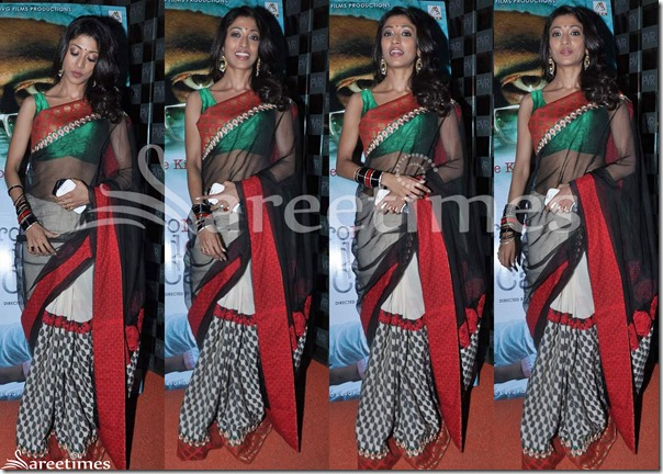 Paoli_Dam_Half_and_Half_Saree