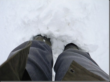 spring snow 004